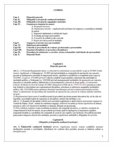 Regulament Intern Puck 14.02.2014 00002 (1)